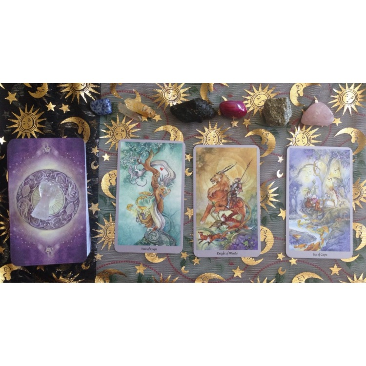 my 3 card reading & the beautiful backing